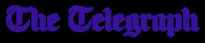 Telegraph White 1 300x64